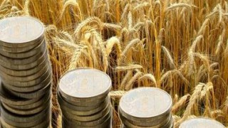 Norway will  invest $ 362 thousand in the agro-industrial complex of Ukraine