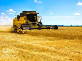UAE is interested in cooperation with the Ukrainian agrarian enterprises
