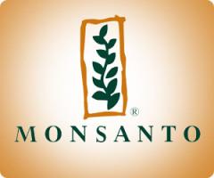 Monsanto получила разрешение от правительства Китая на ввоз ГМ-сои