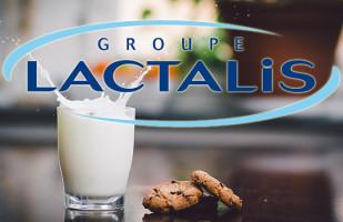 Lactalis купує найбільший завод Румунії Albalact