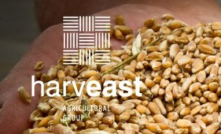 HarvEast invested 500 million UAH in improvement of soil quality