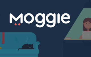 The Ukrainian startup Moggie raised investments in Sweden in the amount of $ 70 thousand