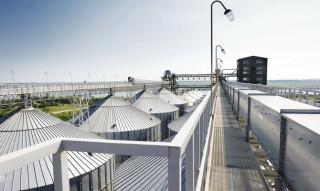 The Turkish company Molino will build a grain terminal in Odessa for $ 150 million