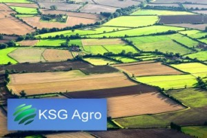 KSG Agro Agroholding is asking for $ 20 million for debt restructuring from international creditors