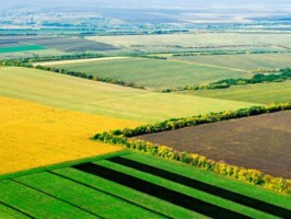 The Agri Eye Ukrainian agro startup raised investments in the amount of $ 150,000