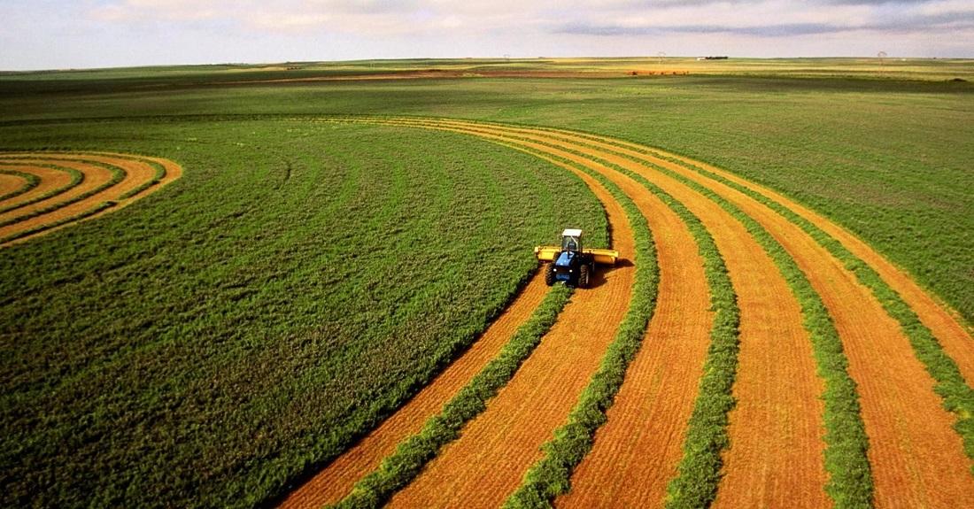«Мироновский хлебопродукт» наращивает активы в Европе