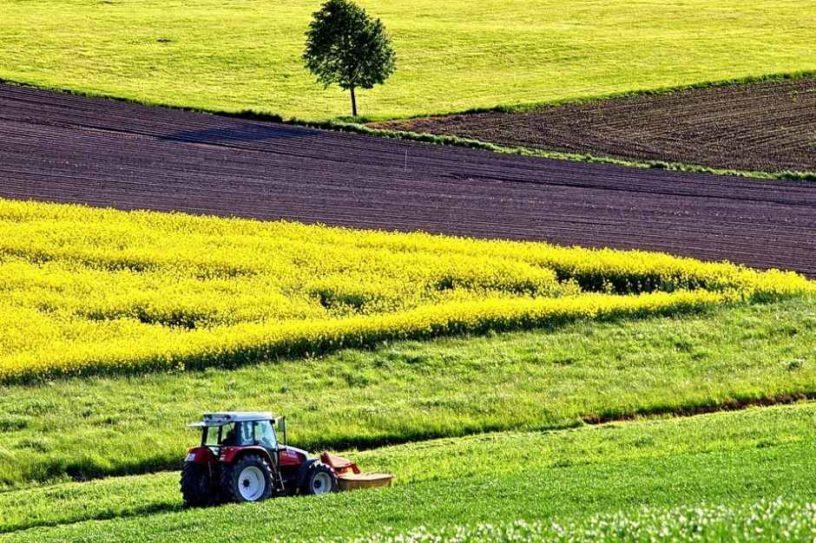 Турецькій компанії дозволили викупити контрольний пакет українського виробника ПВХ