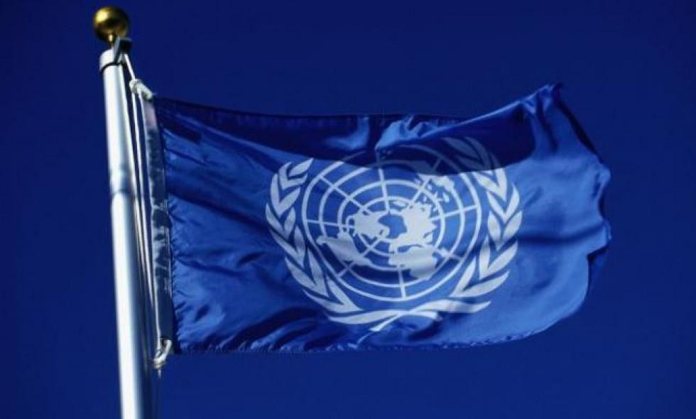 Украина подготовила Меморандум для арбитража ООН