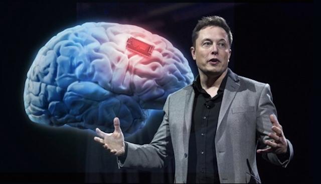 Стартап Neuralink шукає фінансування на 51 мільйон доларів