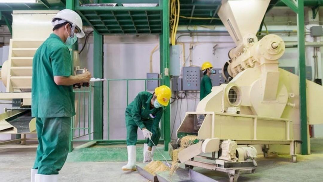 Инвесторы из Голландии начинают строить завод в Украине