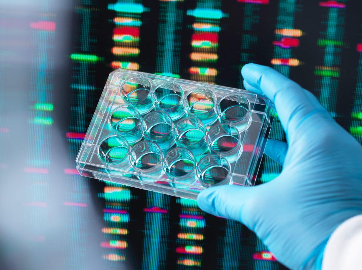 Виробник людських клітин Bit Bio залучив $41,5 млн